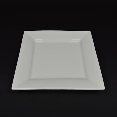 "Orion White 10"" Square Plate"