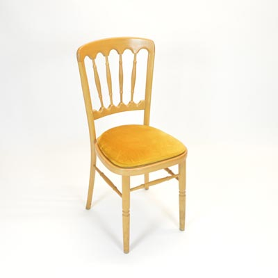 Gold Pad for Banquet Chair